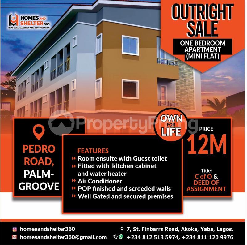 1 bedroom Blocks of Flats for sale Off Pedro Road Shomolu Lagos - 0