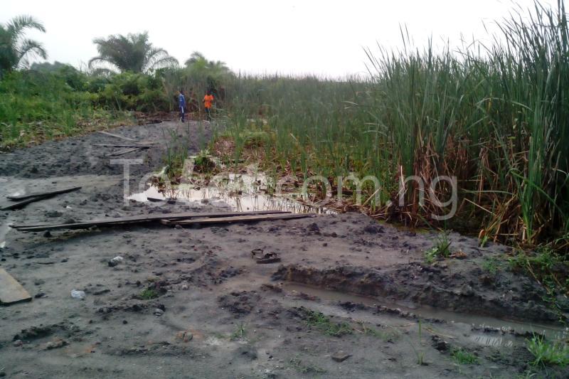Land for sale ALONG FREE TRADE ZONE Free Trade Zone Ibeju-Lekki Lagos - 0
