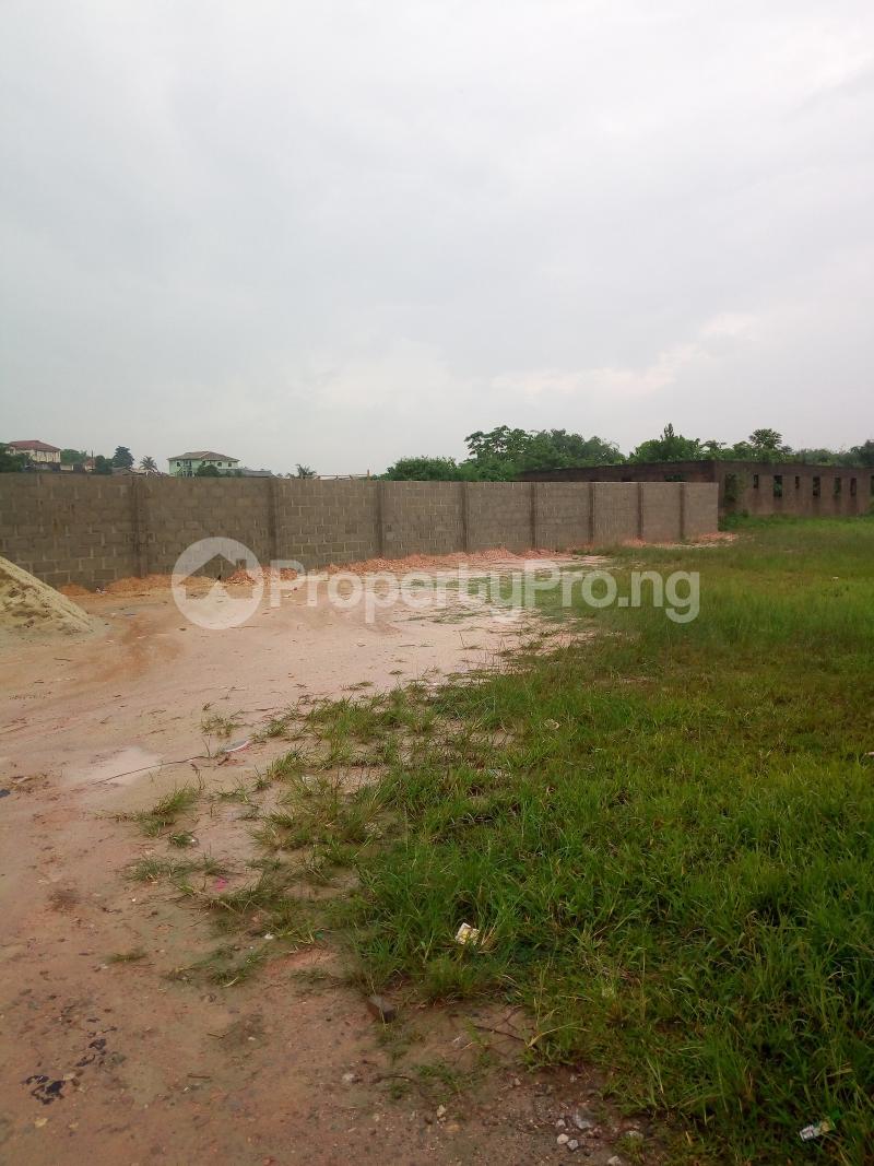 Mixed   Use Land Land for sale Ikorodu Lagos Igbogbo Ikorodu Lagos - 4