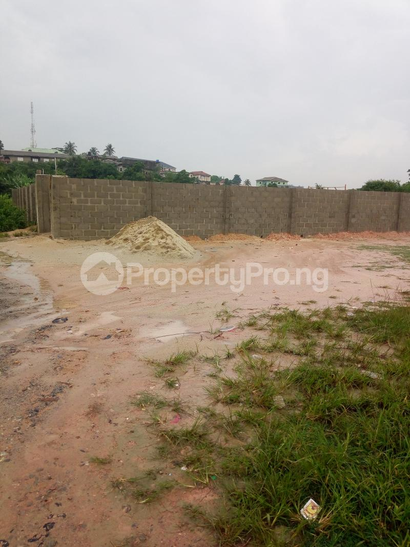 Mixed   Use Land Land for sale Ikorodu Lagos Igbogbo Ikorodu Lagos - 5