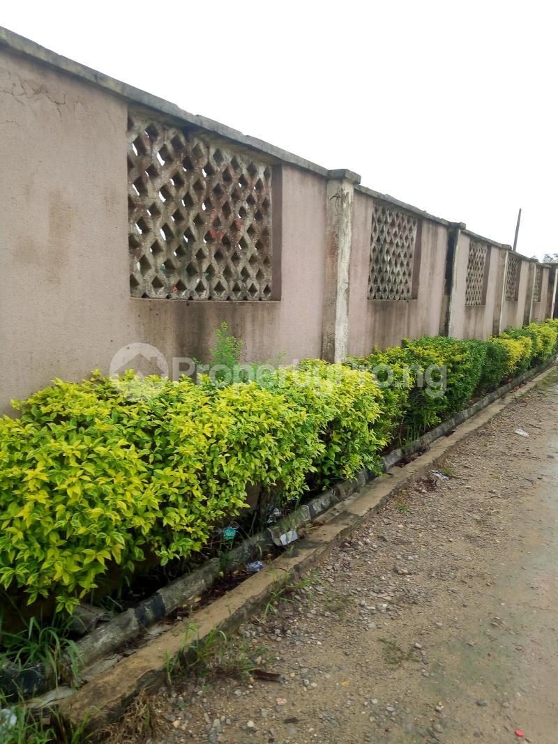 Mixed   Use Land Land for sale Ikorodu Lagos Igbogbo Ikorodu Lagos - 2