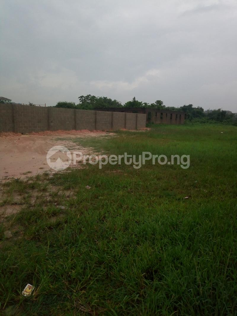Mixed   Use Land Land for sale Ikorodu Lagos Igbogbo Ikorodu Lagos - 1