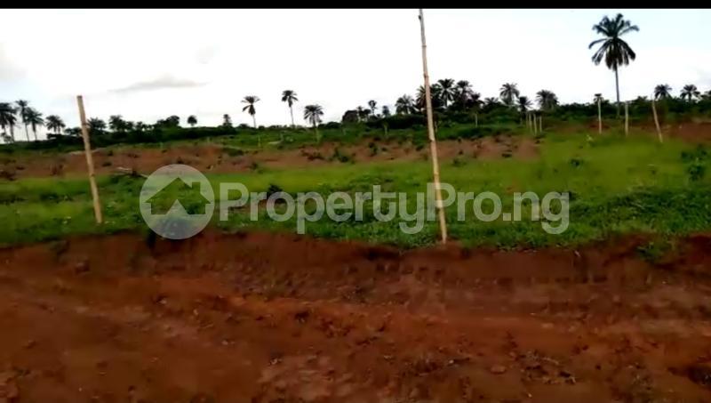 Residential Land Land for sale Asaba Delta - 10