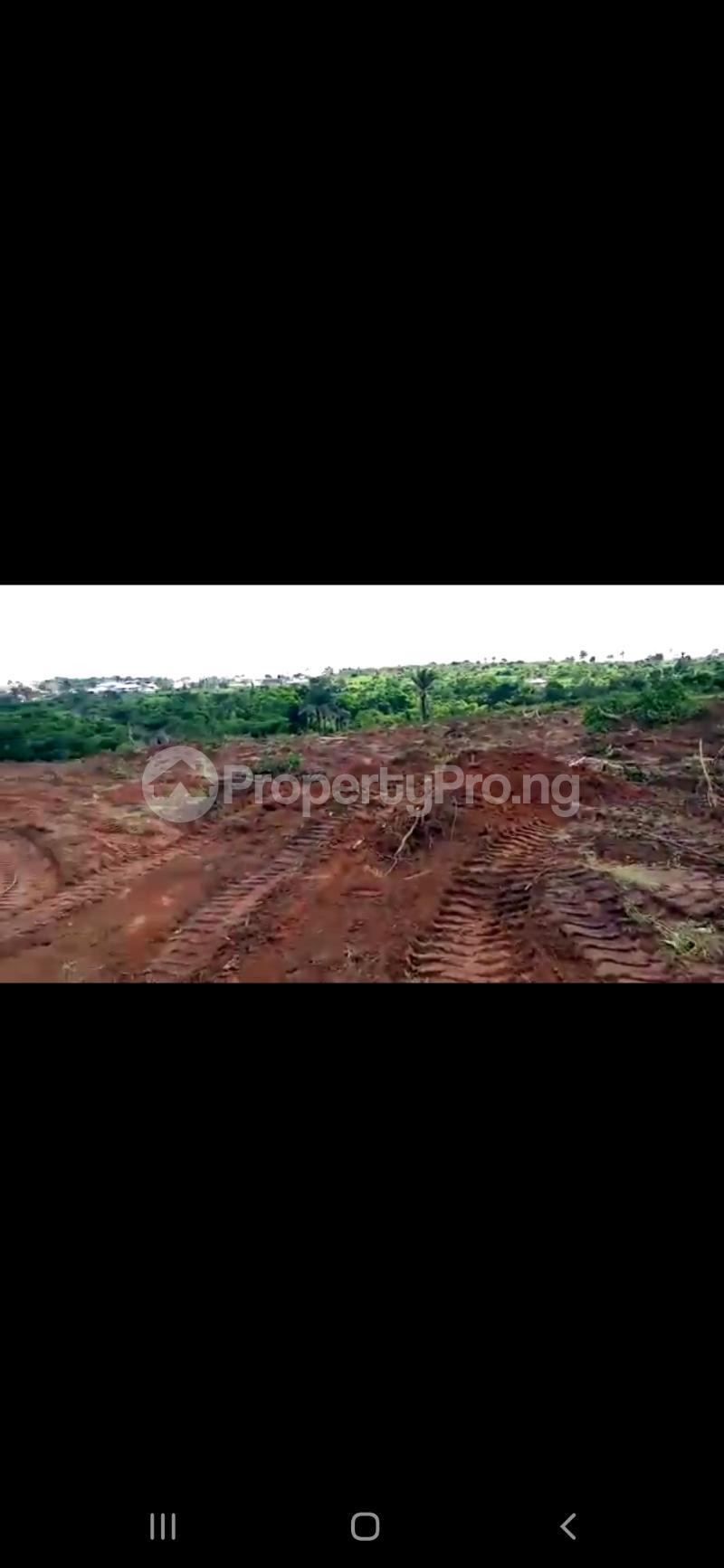 Residential Land Land for sale Asaba Delta - 6