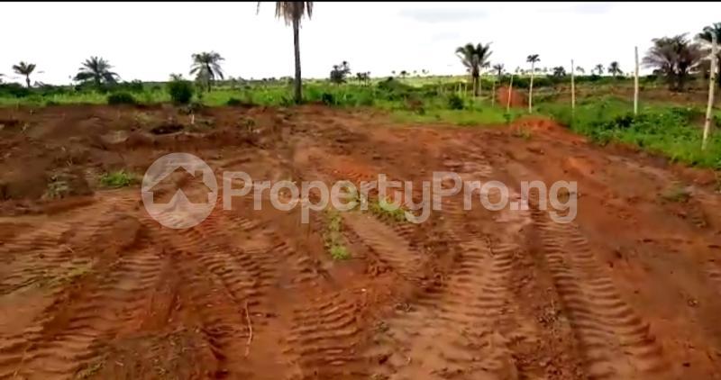 Residential Land Land for sale Asaba Delta - 7