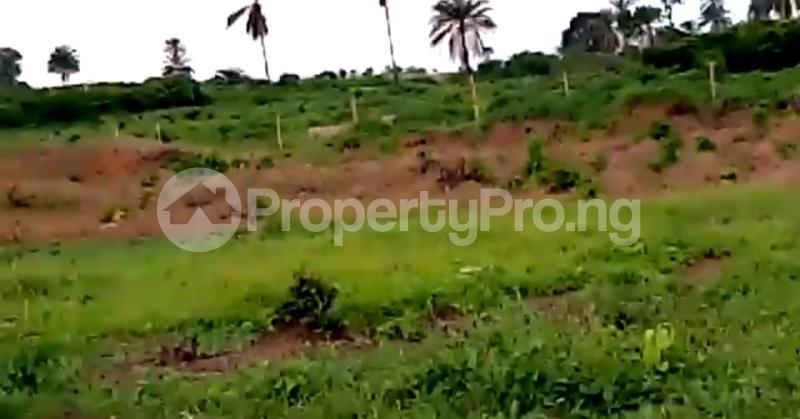 Residential Land Land for sale Asaba Delta - 12