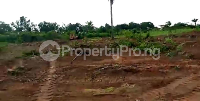 Residential Land Land for sale Asaba Delta - 5