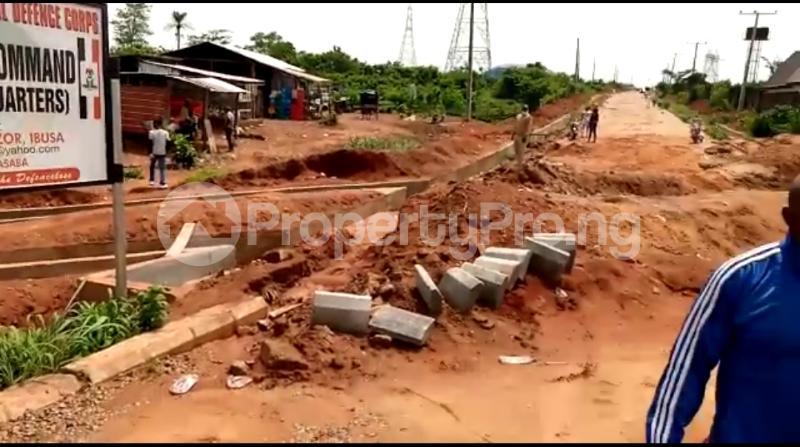 Residential Land Land for sale Asaba Delta - 13