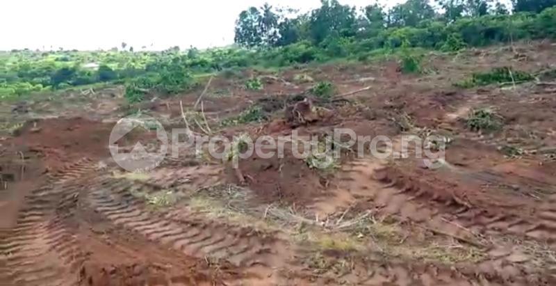 Residential Land Land for sale Asaba Delta - 9