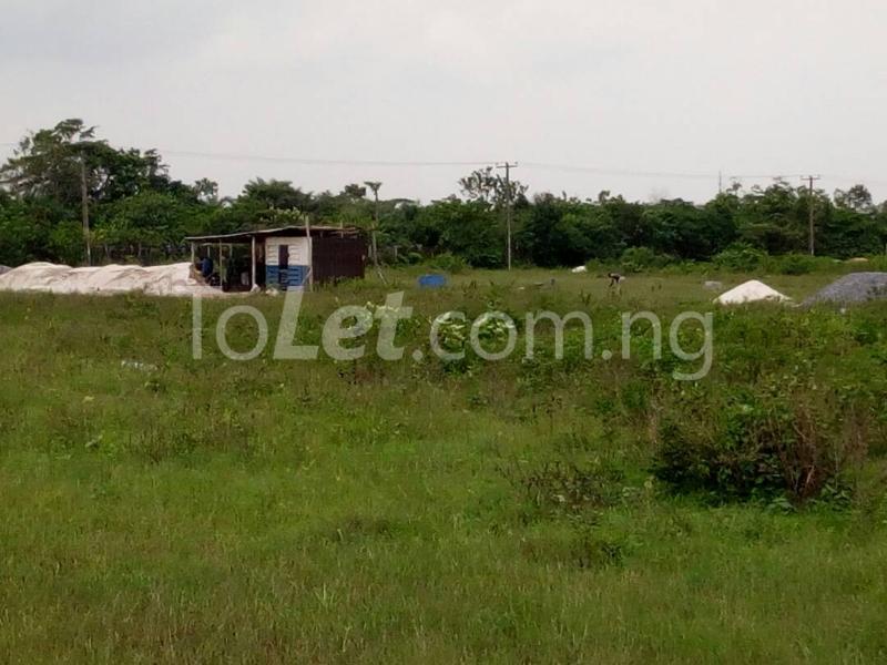 Land for sale Agbala By Seat Of Wisdom Seminary Ikeduru Imo - 1