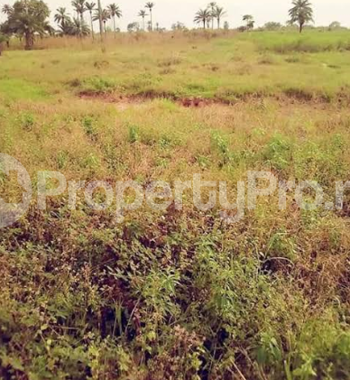 Residential Land Land for sale nkanu east Nkanu Enugu - 0