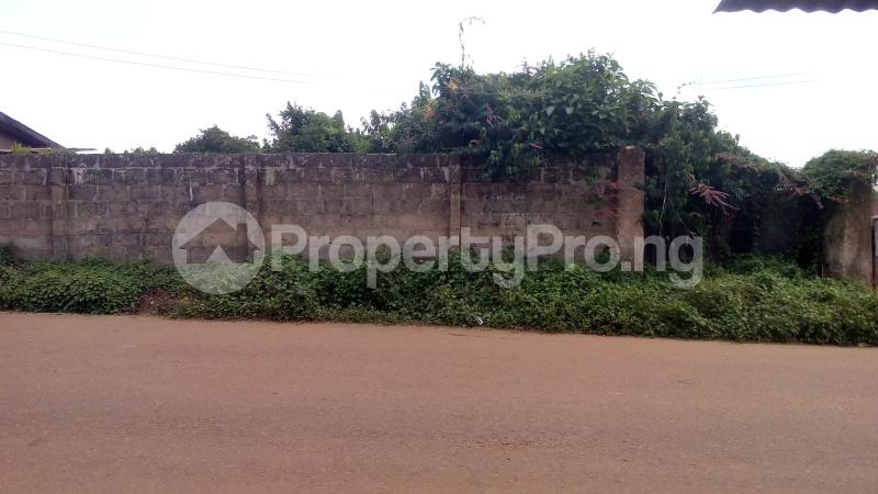 Residential Land Land for sale Oke Ibukun stadium Area Ilesha East Osun - 0