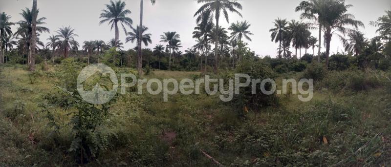 Industrial Land for sale Fiditi Junction, Along Oyo Ibadan Expressway, Fiditi. Afijio Oyo - 0