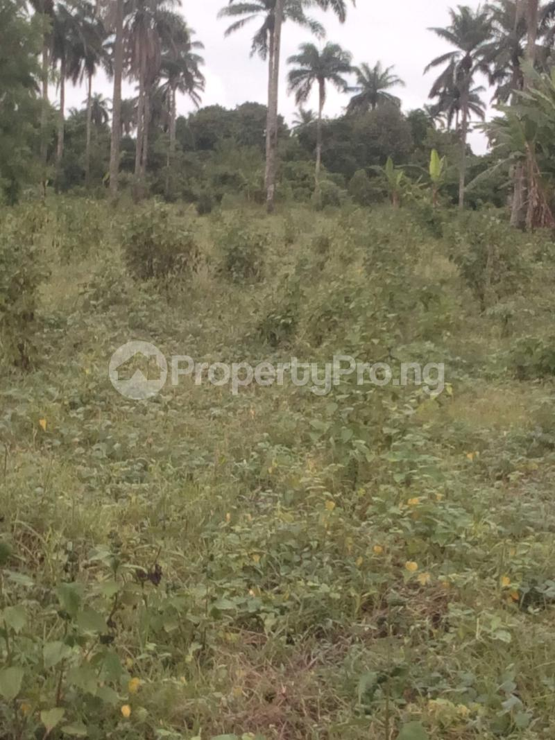 Industrial Land for sale Fiditi Junction, Along Oyo Ibadan Expressway, Fiditi. Afijio Oyo - 2