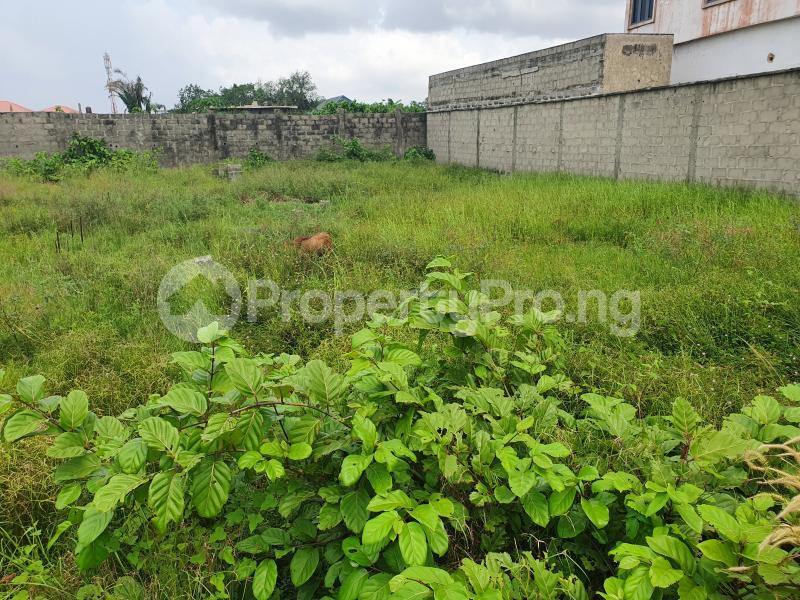 Mixed   Use Land Land for sale Lafiaji Lekki Phase 2 Lekki Lagos - 7
