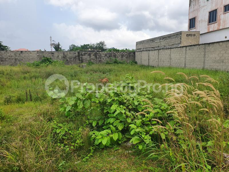 Residential Land Land for sale Lafiaji Lekki Phase 2 Lekki Lagos - 2