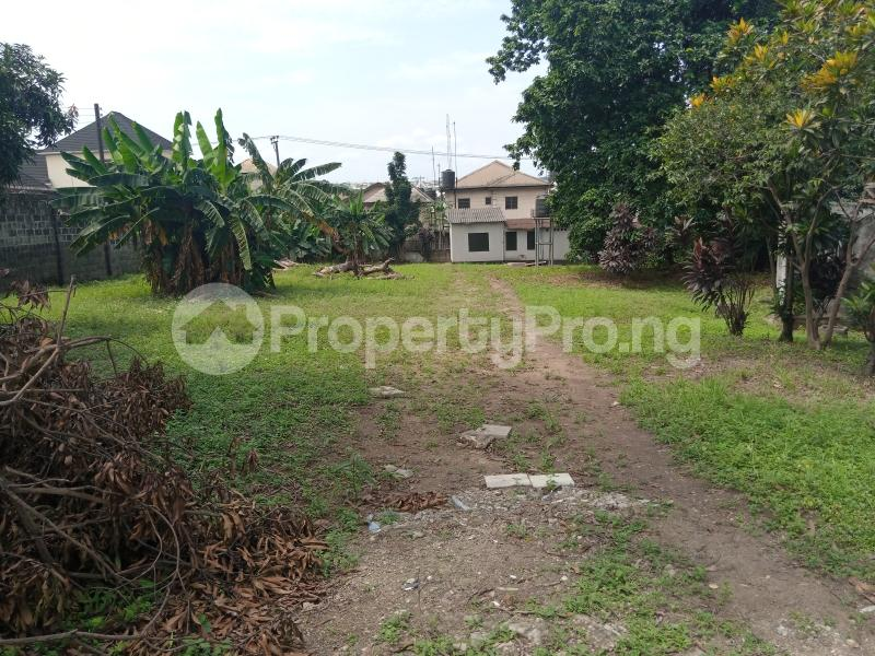Residential Land Land for sale William Jumbo Street, Old Gra Old GRA Port Harcourt Rivers - 4