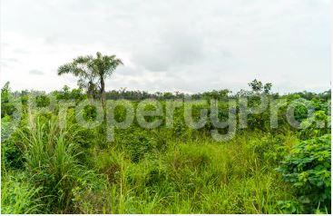 2 bedroom Mixed   Use Land Land for sale Abule Ado (festac Extension) Area Ojo Ojo Lagos - 0