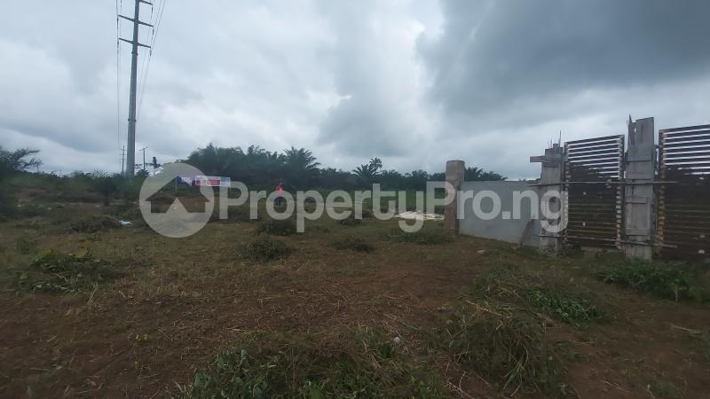 Mixed   Use Land for sale Eghobaye Community Off Sapele Road Benin Central Edo - 4