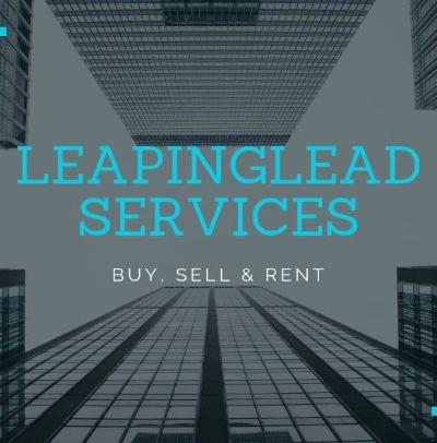 LeapingLead Services