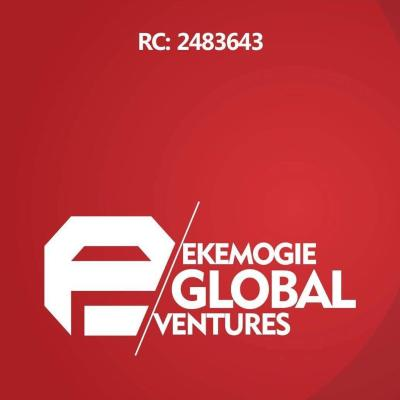 Ekemogie global ventures