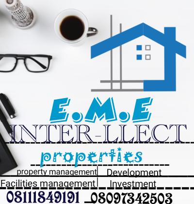 E.M.E-INTER LLECT FACILITIES