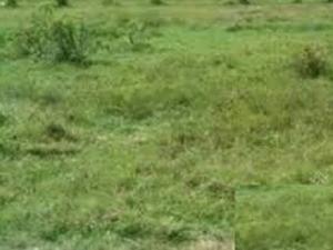 Mixed   Use Land Land for sale Adekunle Street Berger Ojodu Lagos