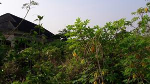 Land for sale After Imadomwonyi street off Amagba  Oredo Edo
