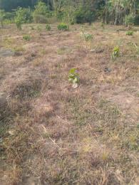Residential Land Land for sale Ayegunle community oba eri C&S church close ilerin via Ilesha east Atakumosa East Osun