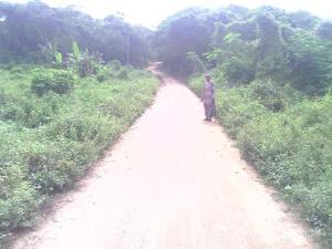 Mixed   Use Land Land for rent Omi Adio Ibadan Oyo