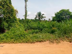 Land for sale Isokan Area Off Pade Arulogun Road Ojoo Ibadan Ibadan Oyo