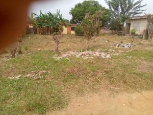 Mixed   Use Land for sale Alalubosa Gra Alalubosa Ibadan Oyo