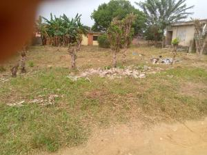 Industrial Land Land for sale Facing main road Ring Rd Ibadan Oyo