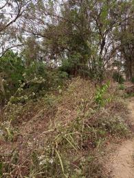 Land for sale Aruloju A3 Express Ojoo Ibadan Oyo