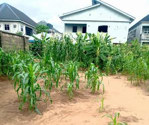 Mixed   Use Land Land for sale Psychiatric Road Port Harcourt Rivers