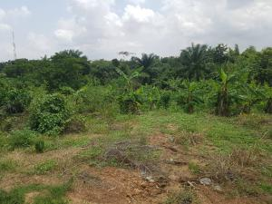 Mixed   Use Land Land for sale   Egbeda Oyo