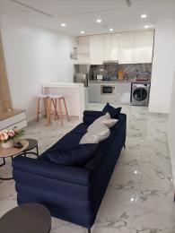 1 bedroom mini flat  Blocks of Flats House for shortlet Adeola Odeku Victoria Island Lagos