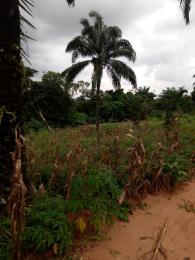 Commercial Land Land for sale Ezimezi Amawbia Awka Awka South Anambra