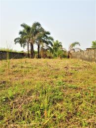 Residential Land Land for sale University View Estate, Opposite Lagos Business School (LBS), Ajah Lagos