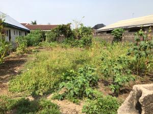 Mixed   Use Land Land for sale Ozuoba, Chief john Chindah street Obio-Akpor Rivers
