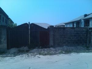 Land for sale Silver Point Estate Ado Ajah Lagos