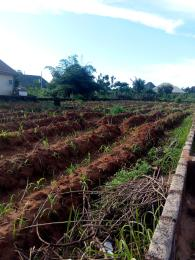 Commercial Land Land for sale At Isu Awka South Anambra