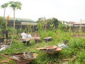 Land for sale Centenary Garden Estate Shell Cooperative Eliozu Port Harcourt Rivers