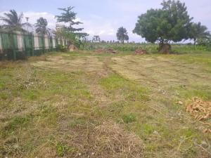 Commercial Land for sale Iiba Bus Stop,lusu Road. Igando Ikotun/Igando Lagos