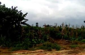 Mixed   Use Land Land for sale Osong Ama Extension Uyo Akwa Ibom