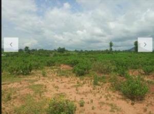 Land for sale Sabon gida  Kado Abuja
