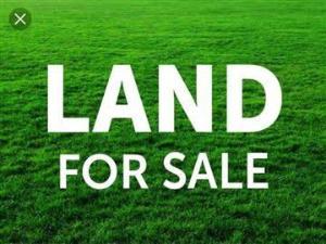 Land for sale Along Ekenwan Road, Opposite University Of Benin Oredo Edo