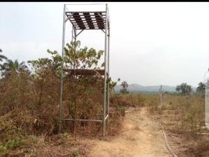Industrial Land Land for sale Bode, Just After Wolex Polytechnic Iwo Osun