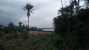 Land for sale Moniya Moniya Ibadan Oyo