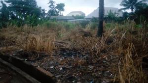 Serviced Residential Land Land for sale Nsukka-Ikem Rd Isi-Uzo Enugu